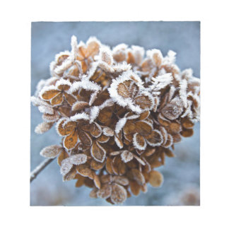 Bloom with ice crystals notepad