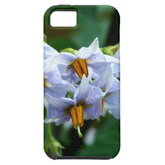 Bloomin' Taters iPhone 5 Case