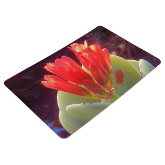 Blooming Agave Floor Mat