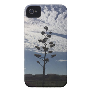 Blooming agave iPhone 4 Case-Mate case