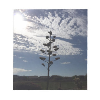 Blooming agave notepads