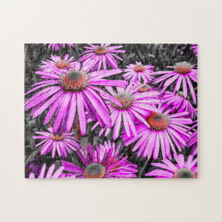 Blooming Asters Jigsaw Puzzle