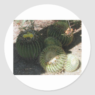 BLOOMING BARREL CACTI AND ASSORTED PHRASES ROUND STICKER