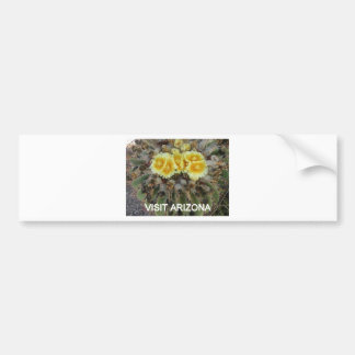 BLOOMING BARREL CACTI AND PHRASES BUMPER STICKER