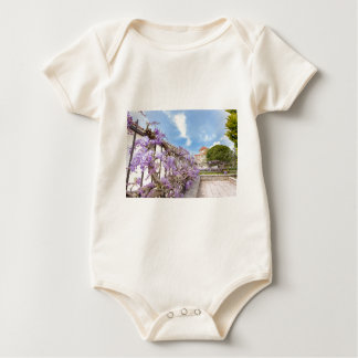 Blooming blue Wisteria sinensis on fence in Greece Baby Bodysuit