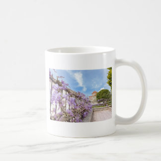Blooming blue Wisteria sinensis on fence in Greece Coffee Mug