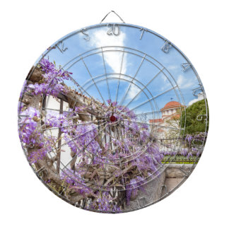 Blooming blue Wisteria sinensis on fence in Greece Dartboard