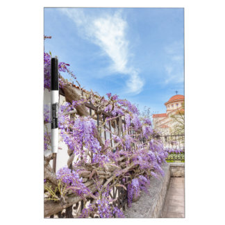 Blooming blue Wisteria sinensis on fence in Greece Dry-Erase Whiteboard