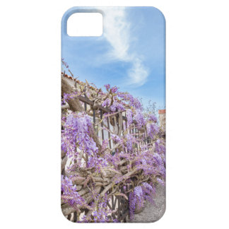 Blooming blue Wisteria sinensis on fence in Greece iPhone 5 Case