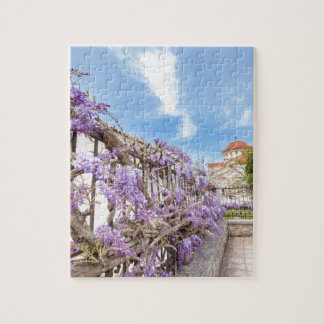 Blooming blue Wisteria sinensis on fence in Greece Jigsaw Puzzle