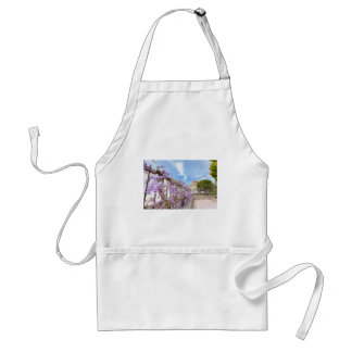 Blooming blue Wisteria sinensis on fence in Greece Standard Apron