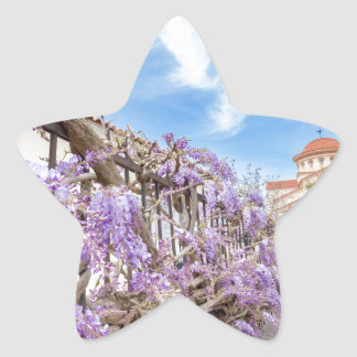 Blooming blue Wisteria sinensis on fence in Greece Star Sticker