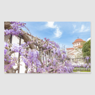 Blooming blue Wisteria sinensis on fence in Greece Sticker