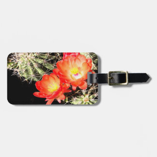 Blooming Cactus at Night Luggage Tag