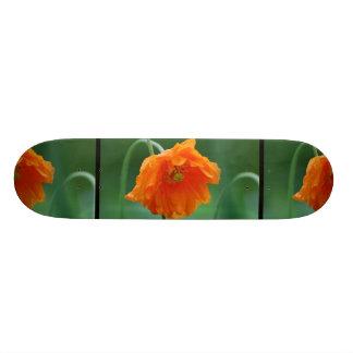 Blooming California Poppy Skateboard Decks