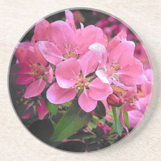 Blooming Crabapple Coaster