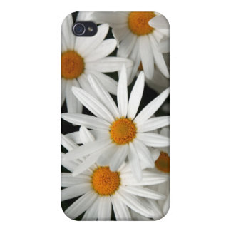 Blooming Daisies iPhone 4 Cover