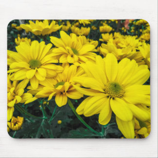Blooming flower mouse pad