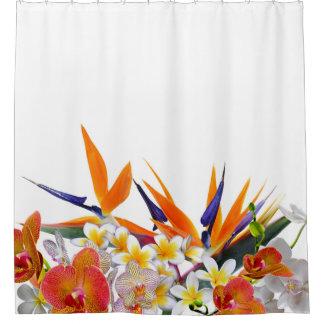 Blooming Joy-Tropical Flowers