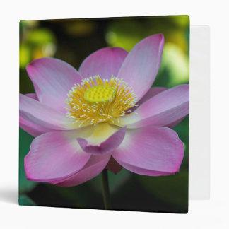 Blooming lotus flower, Indonesia 3 Ring Binders