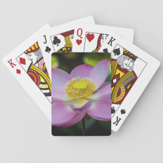 Blooming lotus flower, Indonesia Poker Deck