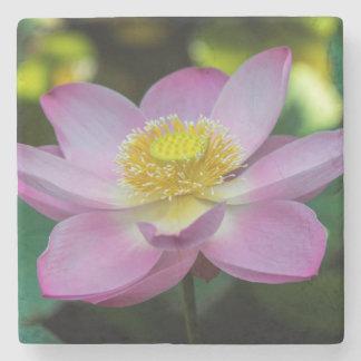 Blooming lotus flower, Indonesia Stone Beverage Coaster
