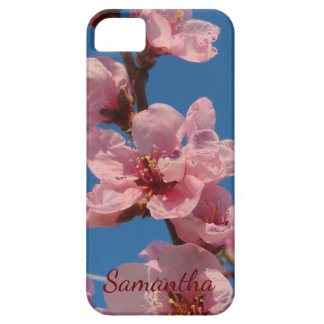 Blooming peach tree pink blooms in springtime iPhone 5 cases