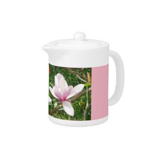Blooming Pink Magnolia 01.2