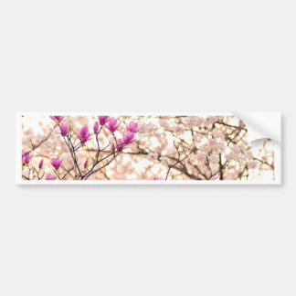Blooming Pink Purple Magnolias Spring Flower Bumper Sticker