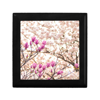 Blooming Pink Purple Magnolias Spring Flower Gift Box