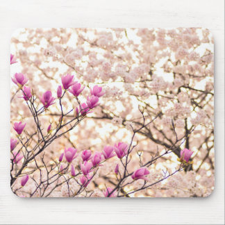 Blooming Pink Purple Magnolias Spring Flower Mouse Pad