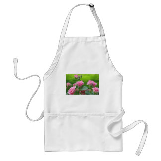 Blooming Pink Roses Aprons
