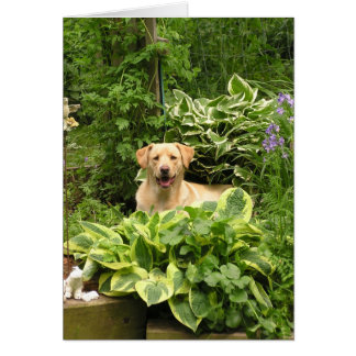 Blooming Puppies Card