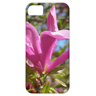 Blooming Purple Magnolia iPhone 5 Covers