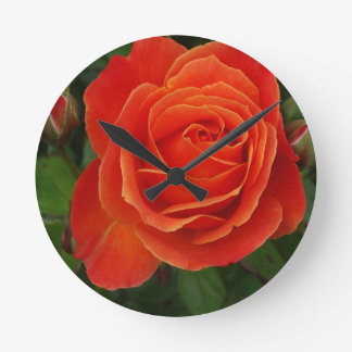 Blooming Rose Orange Red Wall Clock