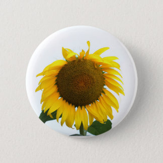 Blooming Sunflower 2 Inch Round Button