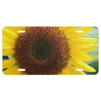 Blooming Sunflower License Plate