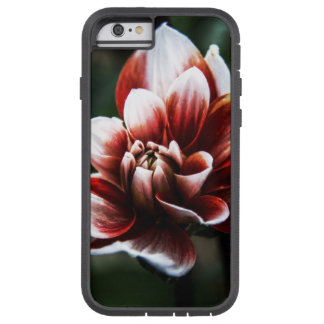 Blooming Tulip Tough Xtreme iPhone 6 Case