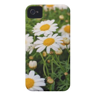 Blooms Boom Case-Mate iPhone 4 Case