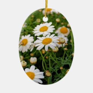 Blooms Boom Ceramic Oval Ornament