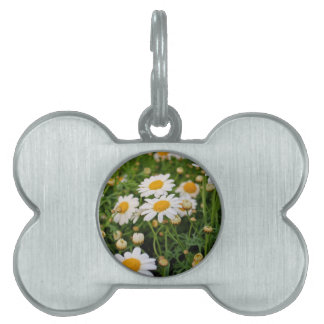 Blooms Boom Pet Name Tags