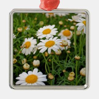 Blooms Boom Silver-Colored Square Ornament