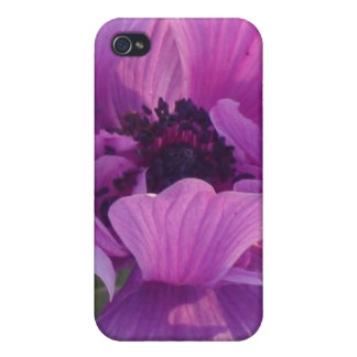 Blooms iPhone 4 Cases