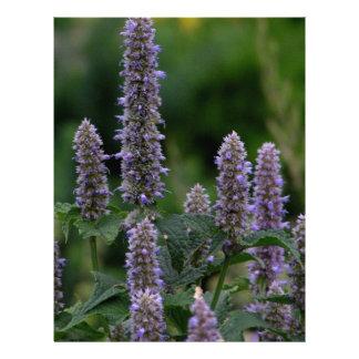 Bloomspikes in the garden letterhead
