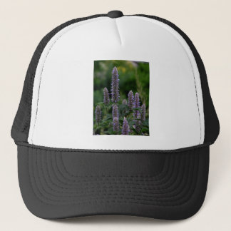 Bloomspikes in the garden trucker hat