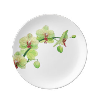 Blossom Beauties Small Plate - Green Orchid