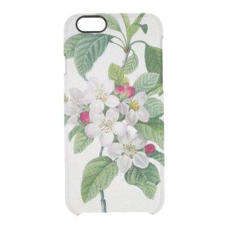 Blossom, from 'Les Choix des Plus Belles Clear iPhone 6/6S Case