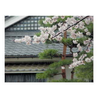 Blossom in the Rain Poster