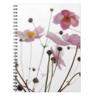 blossom notebooks
