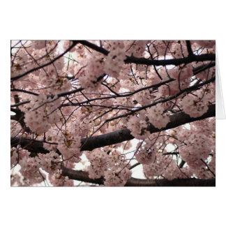Blossom Notecards Card